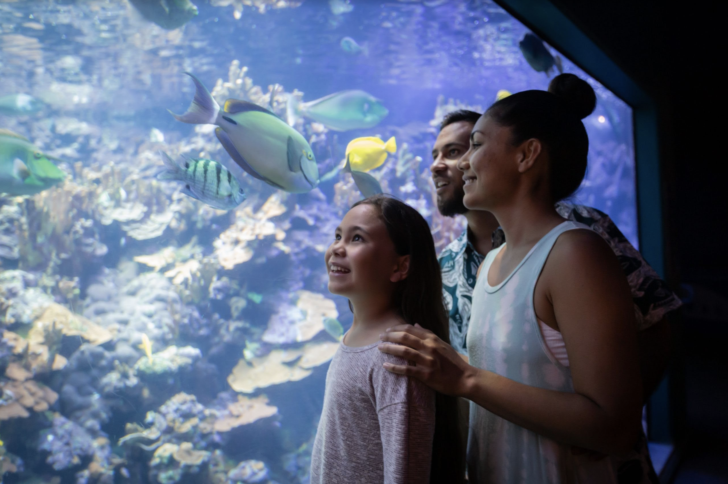 Maui Ocean Center Launches Nā Hoa Kai Membership for Kamaʻāina