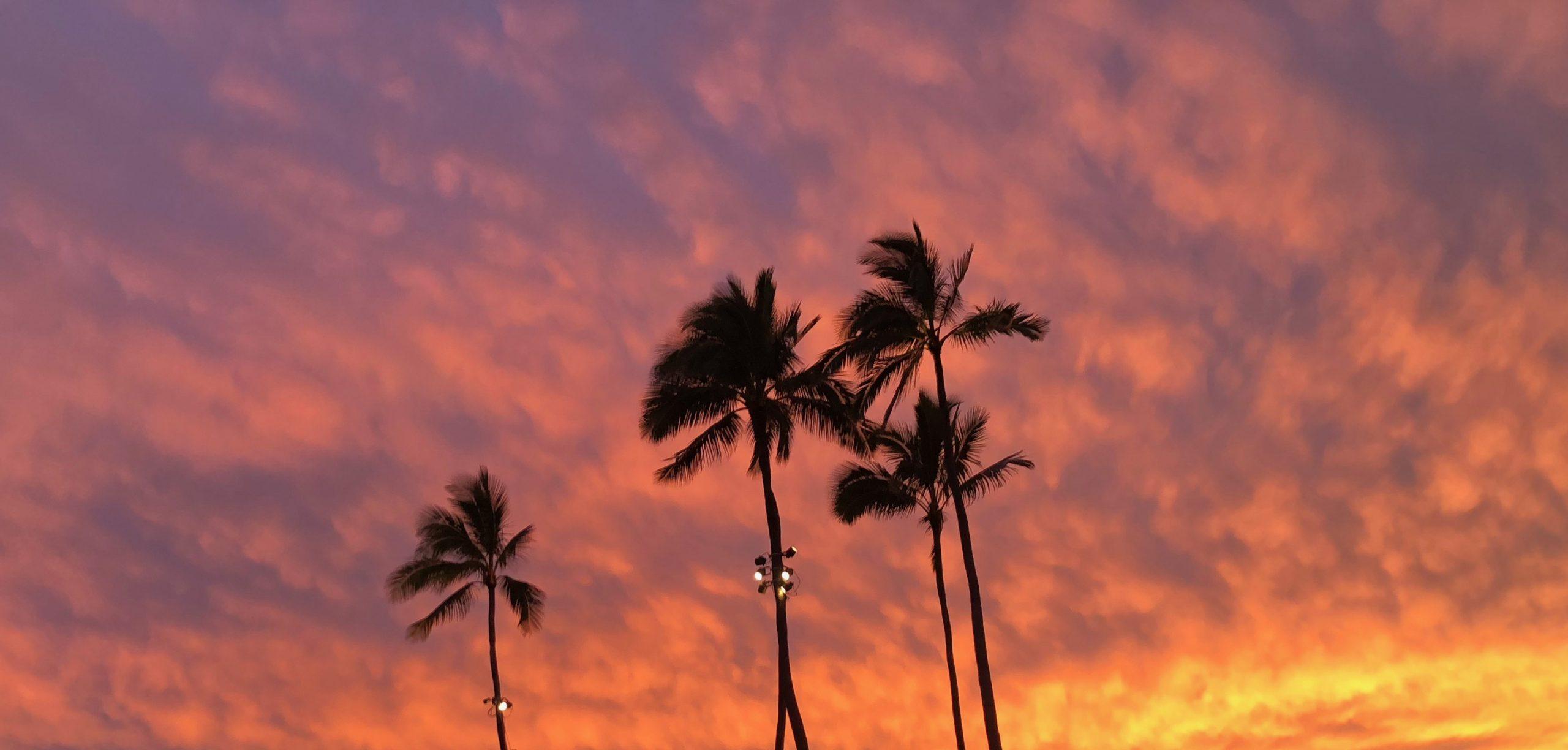 """Filming of """"NCIS: Hawai'i"""" Begins on O'ahu"""