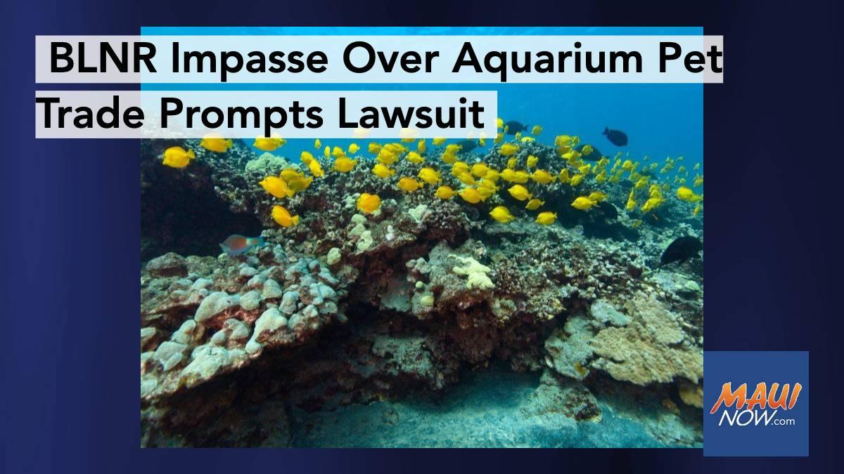 BLNR Impasse on Aquarium Pet Trade Prompts Lawsuit