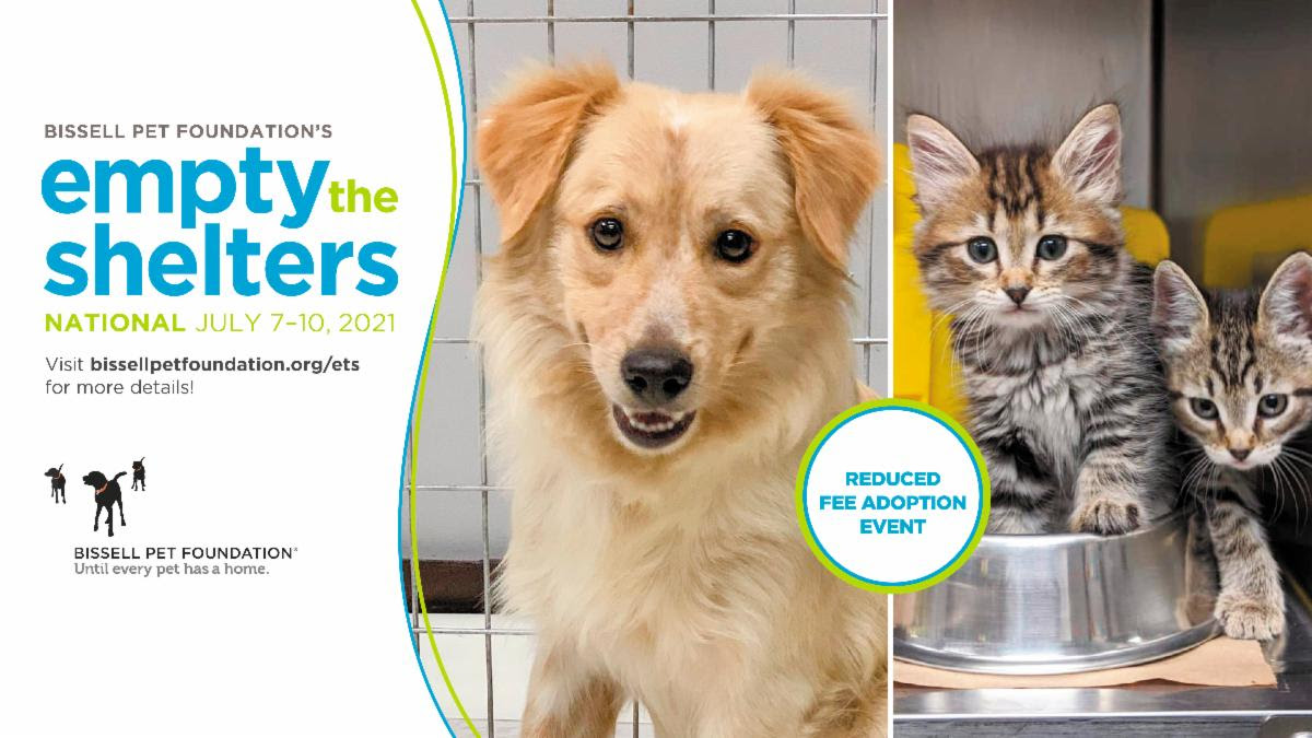 Reduced Adoption Fees at Maui Humane Society, July 7-10