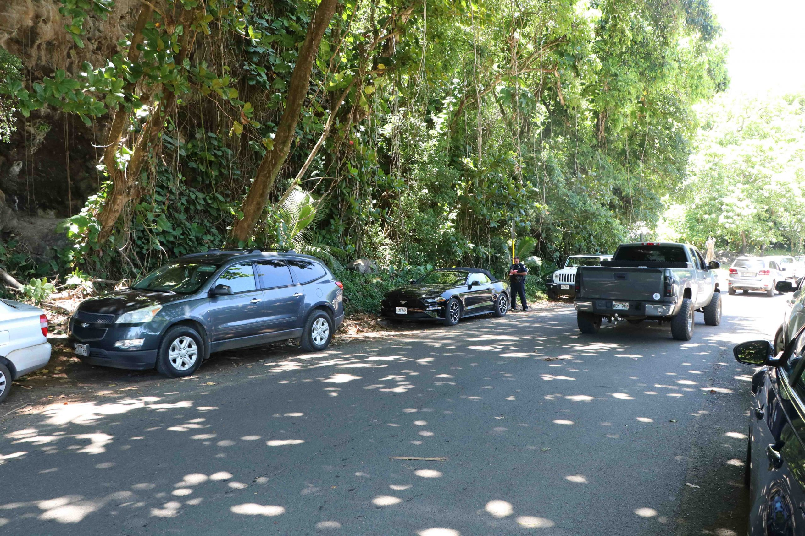 Innovative Adaptive Tourism Management Underway at Hāʻena State Park on Kauaʻi