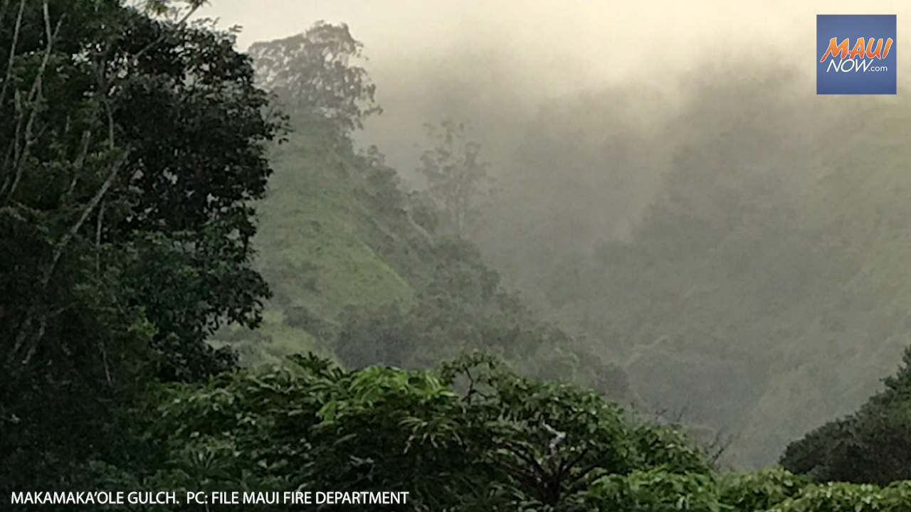 Missing Hiker Rescued at Makamakaʻole Gulch After 4.5 Hour Search