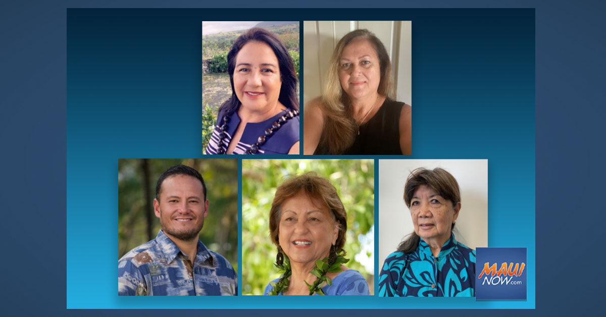 Five Candidates Apply to Fill House District 13 Vacancy