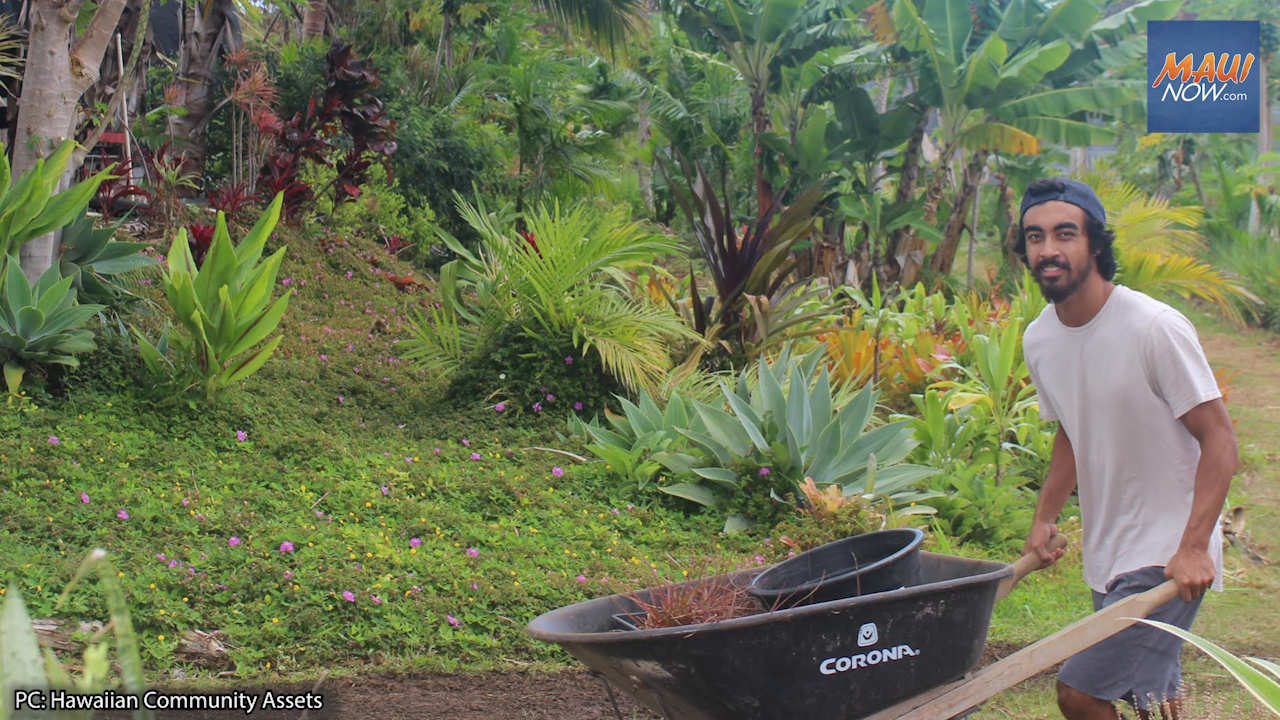Native Hawaiian Farmers Encouraged to Apply for Renter and Homebuyer Programs