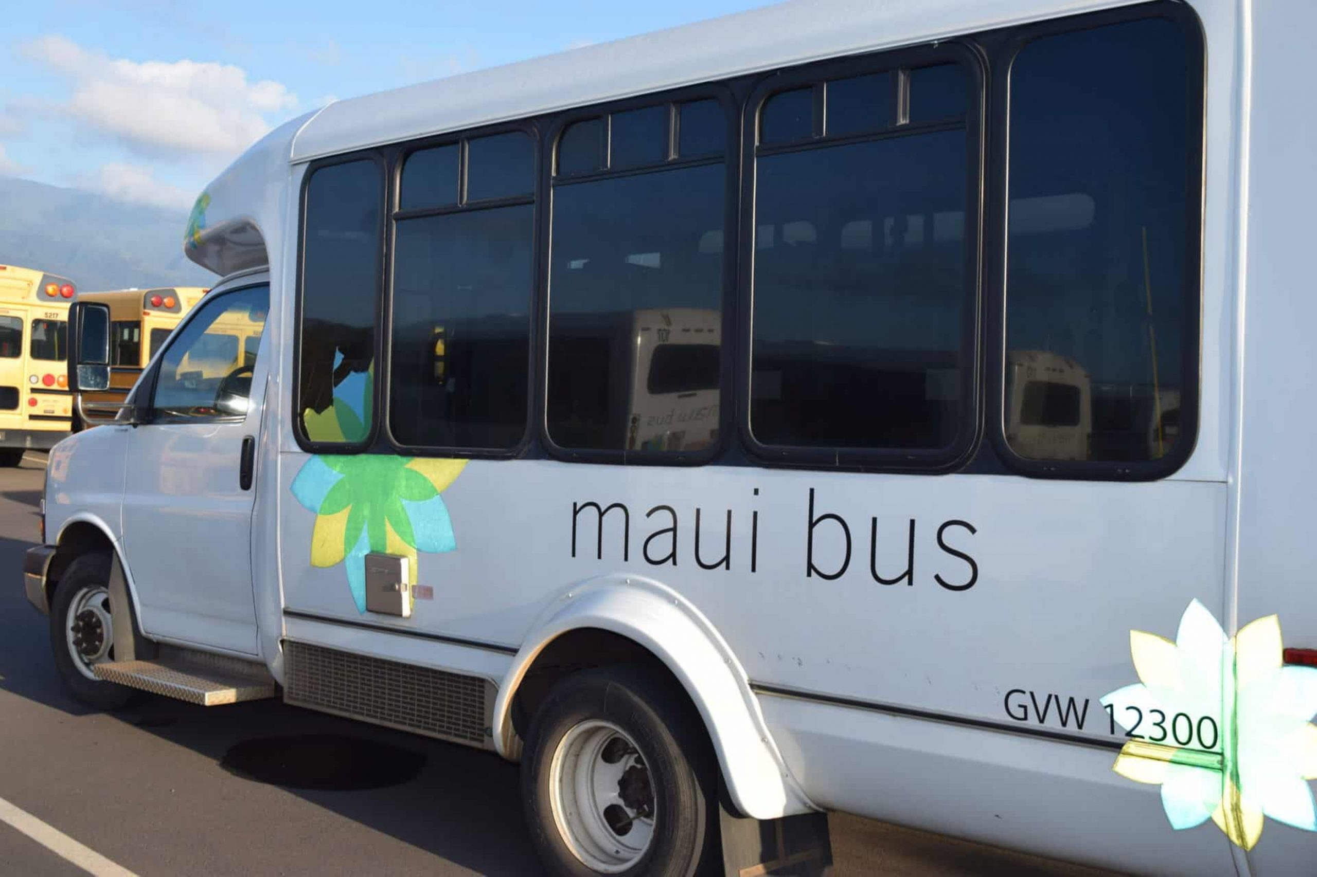 New Paratransit Advisory Committee to Be Formed; Members Sought