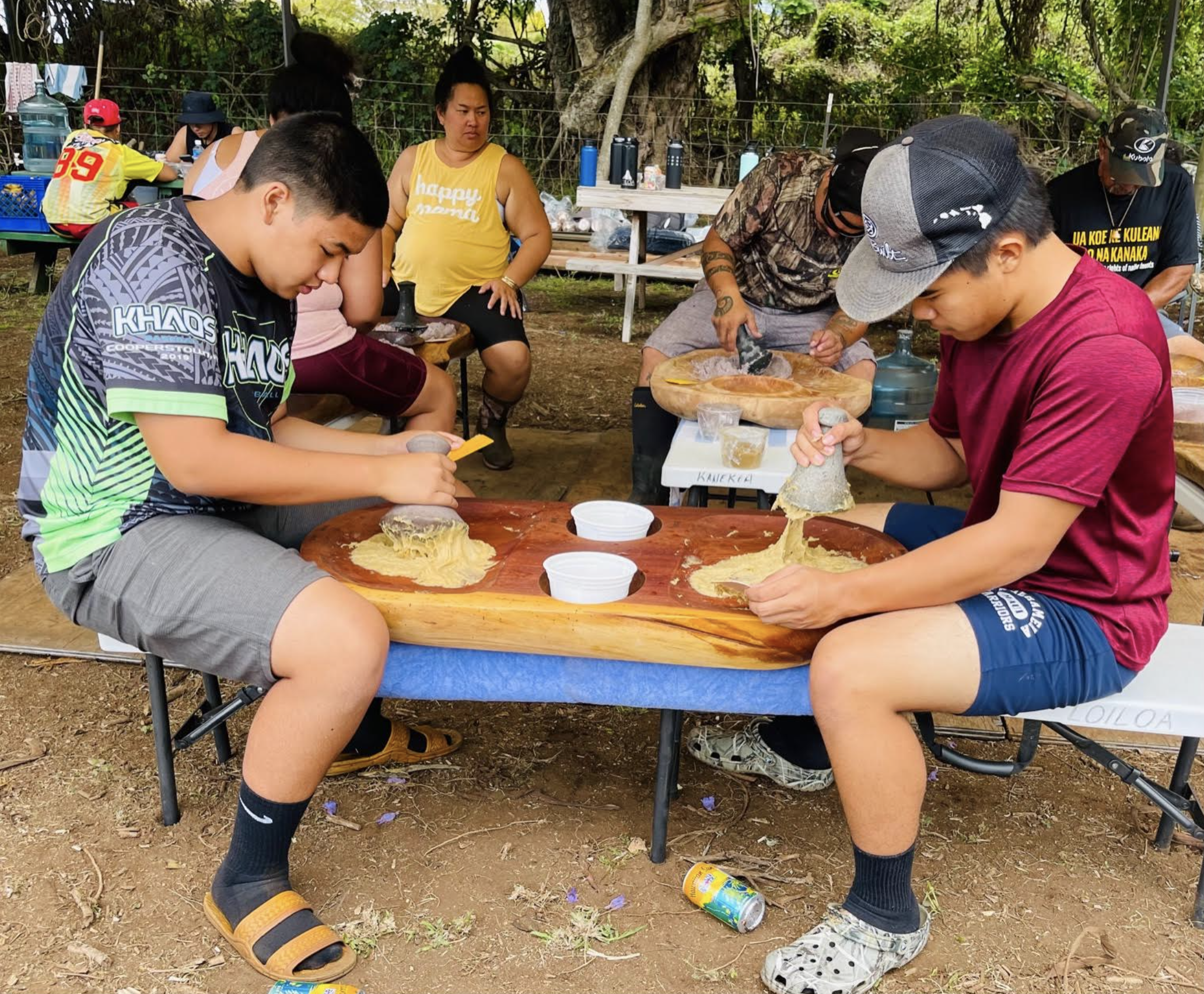 100 Pounds of Kalo Harvested During Student Work Day at Waiohuli Homestead