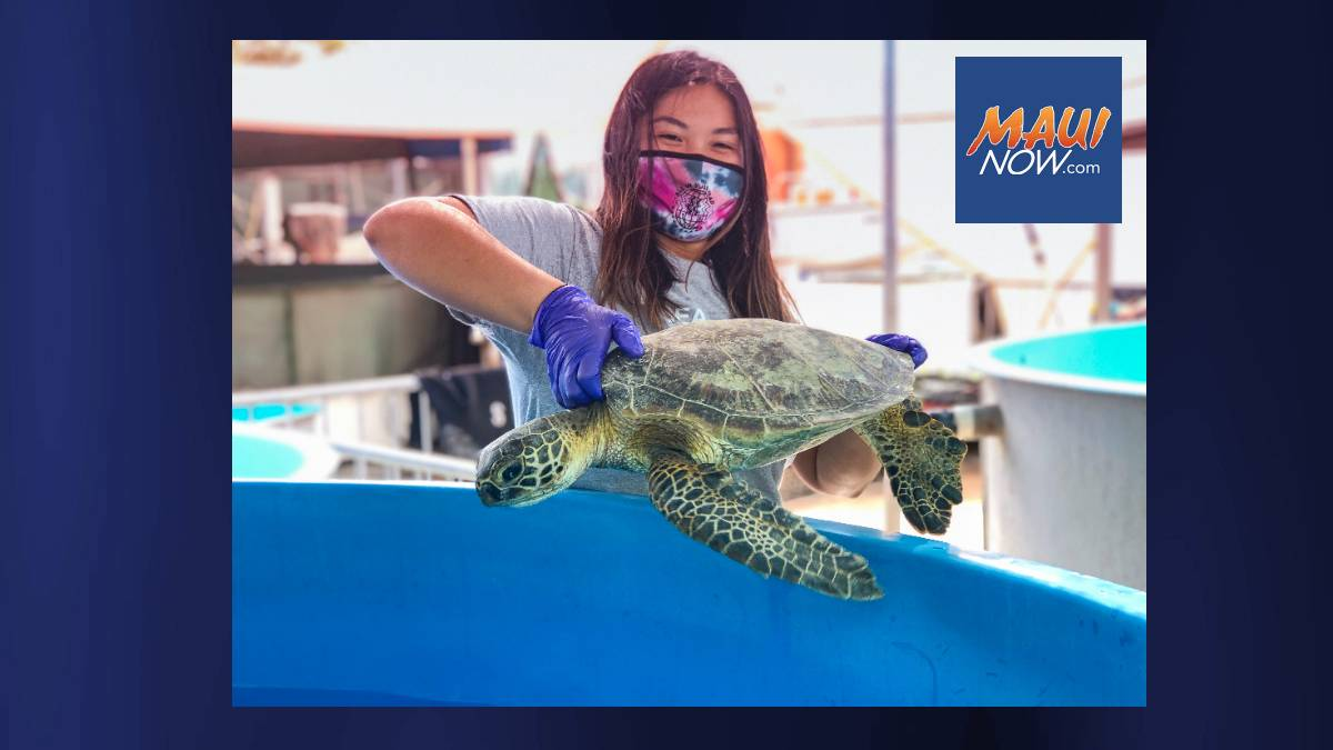 Virtual Event Oct. 20 for Maui Youth Interested in Marine Science Careers