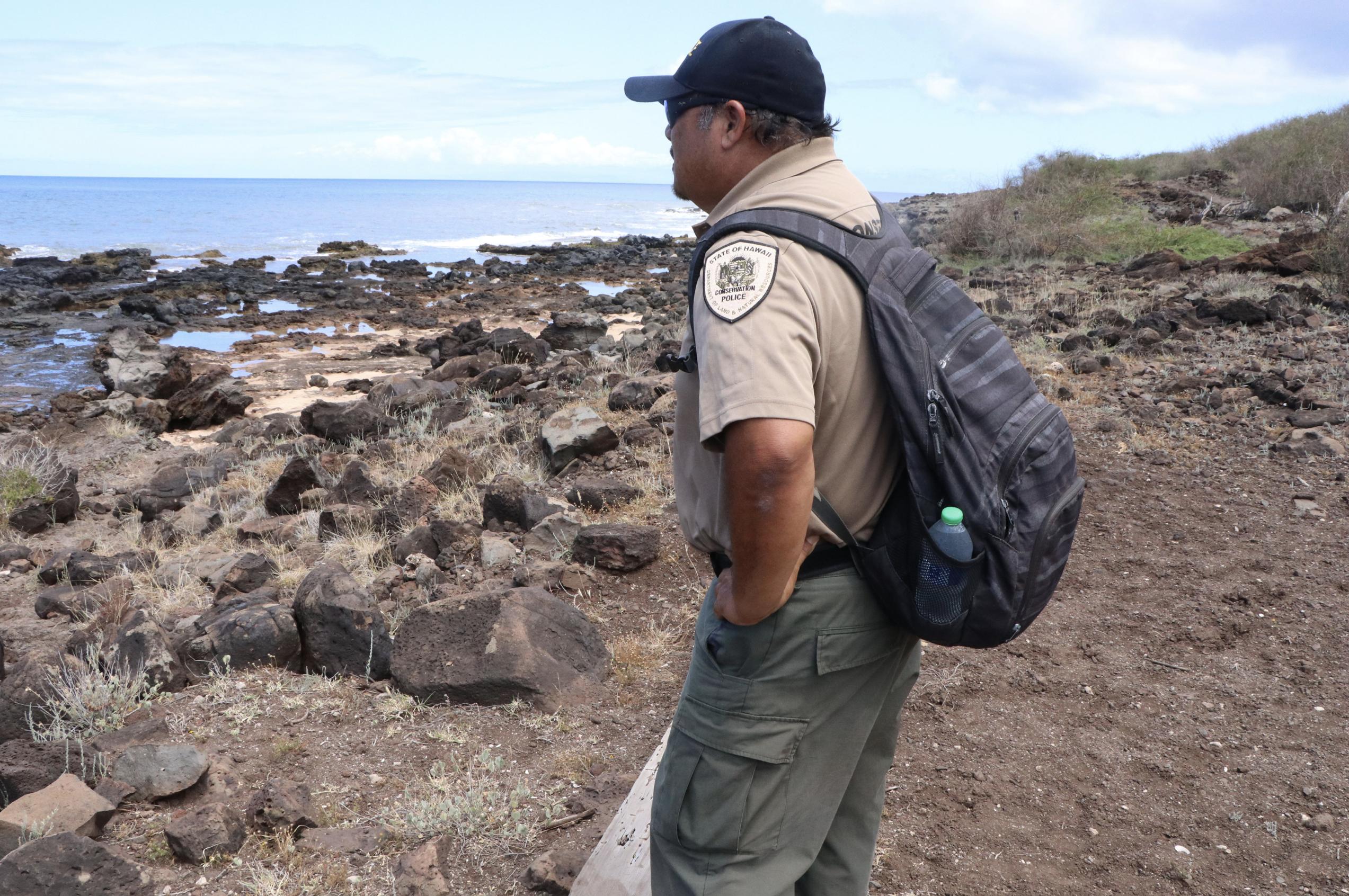 Sixth Monk Seal Death on Moloka'i Prompts Investigation