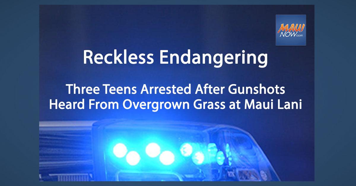 Three Teens Arrested After Gunshots Heard From Overgrown Grass at Maui Lani