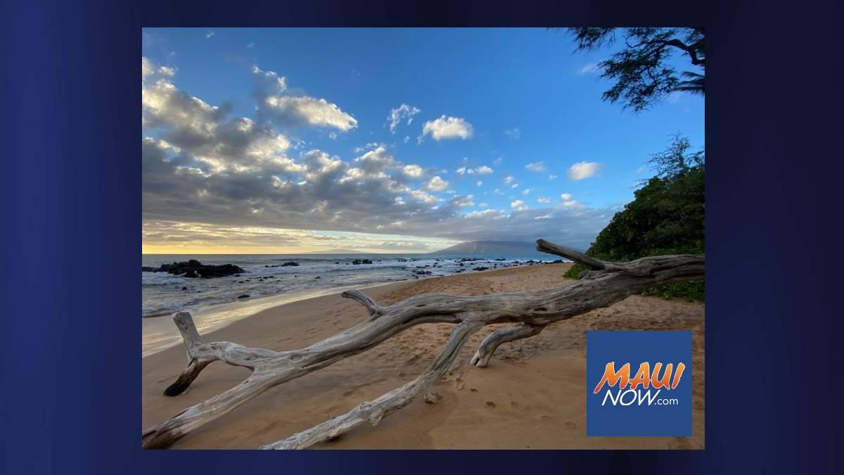 New South Maui & Pāʻia-Haʻikū Advisory Committees Seeking Members