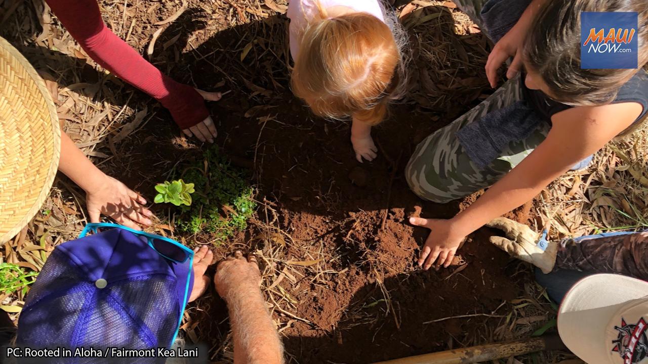 Fairmont Kea Lani Launches 30th Anniversary Reforestation Initiative