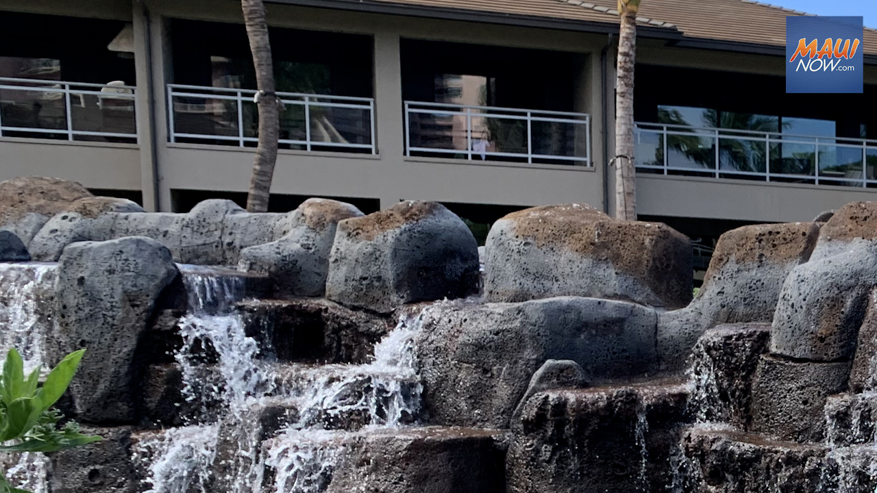 Council Unanimously Passes 3% Transient Accommodations Tax for County of Maui